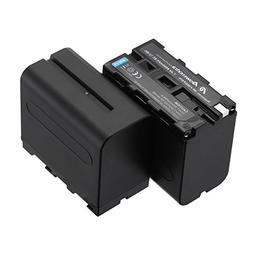 Powerextra 2 Pack Replacement Sony NP-F970 Battery Compatibl